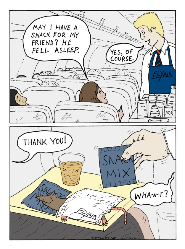 In-Flight Snack