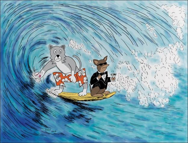 Surf! Spy!