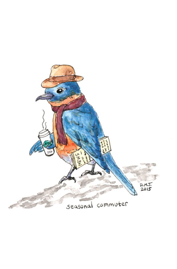 Seasonal Commuter