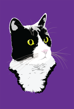 Regal Tuxedo Kitty illustration