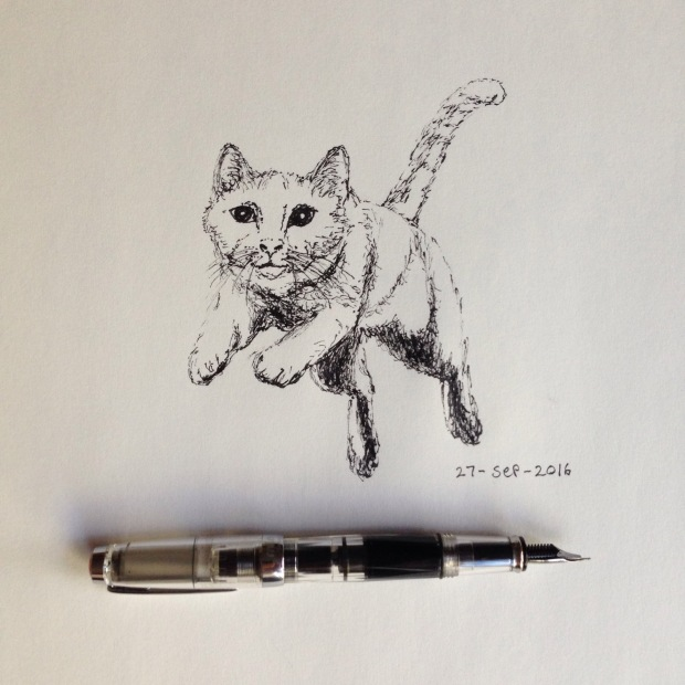 Ink drawing of cat pouncing