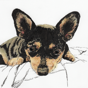 Pen and watercolor drawing of Mouse the dog