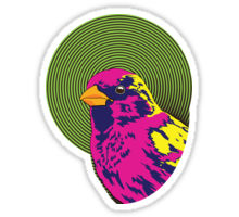 Sparrow Spectrum design decorating a Redbubble sticker