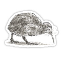 Kiwi bird design decorating a Redbubble sticker
