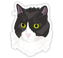 Redbubble Casual Cat sticker