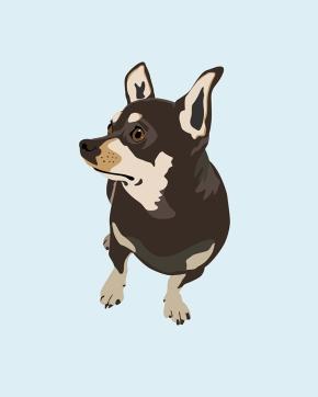 Hopeful Dog digital illustration