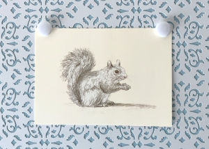 Squirrel at Rest 5x7 art print