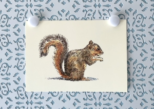 Squirrel at Rest 5x7 art print