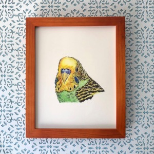 Parakeet 8x10 print at Etsy