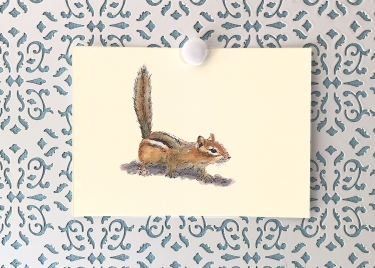 Curious Chipmunk 5x7 art print