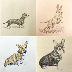 Four dog drawings