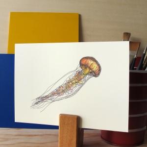 Jellyfish 5x7 art print