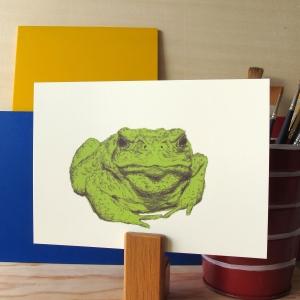 Toad Face 5x7 art print