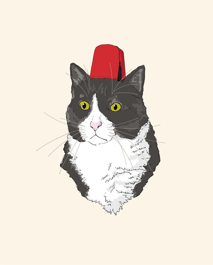 Fez Hat Cat | The Pawses