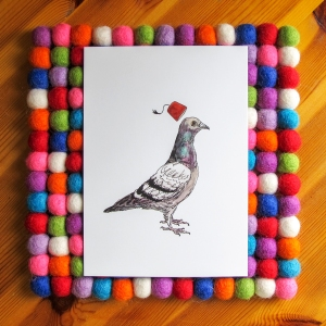 Unflappable Pigeon bright white 5x7 art print