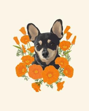 Poppy Dog Illustration