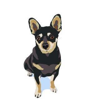 Mr. Mouse the Chihuahua Dog