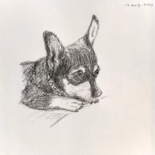 Mouse the dog