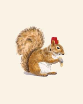 Fez Hat Squirrel