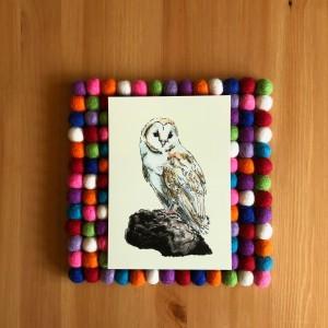 Barn Owl 5x7 print