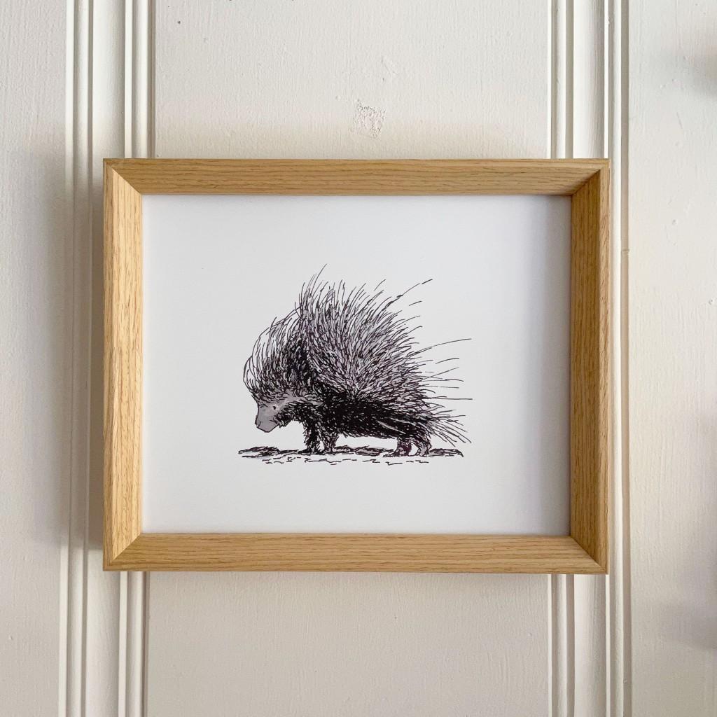 porcupine 8x10 print